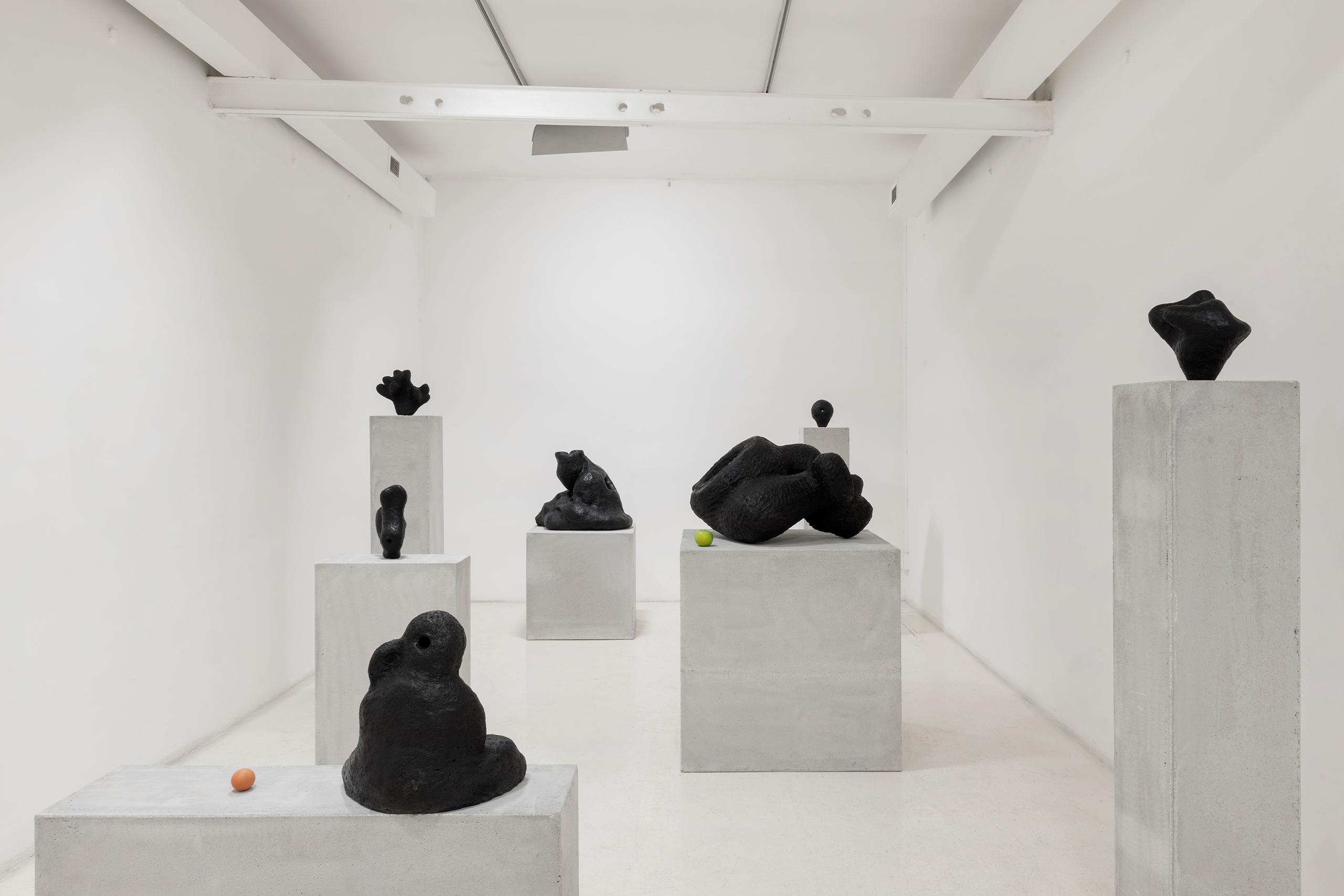 Namsal Siedlecki, Mvaḥ Chā, 2020. View of the exhibition curated by Marcello Smarrelli, Courtesy Fondazione Pastificio Cerere and the artist. Photo Andrea Veneri_