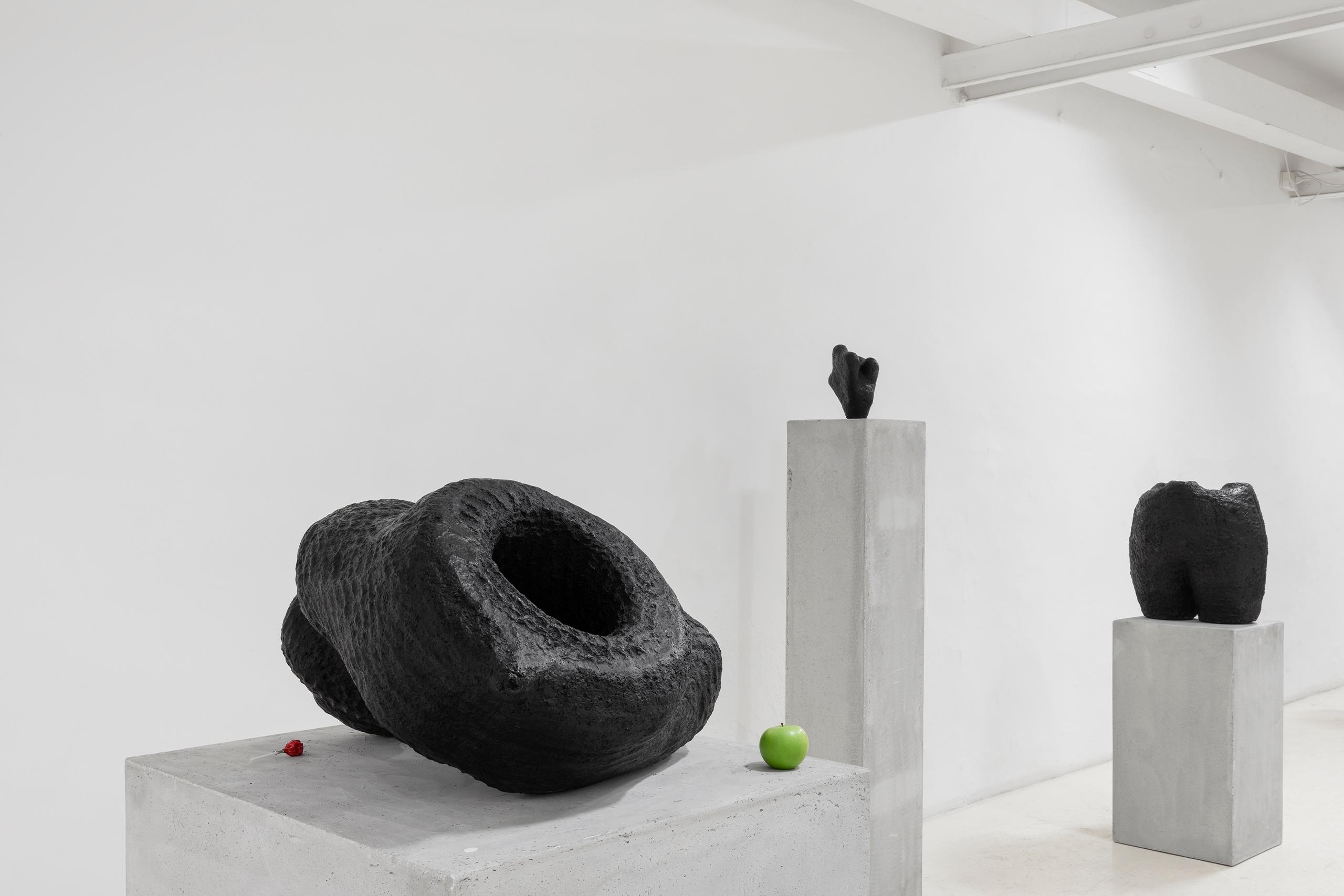 Namsal Siedlecki, Mvaḥ Chā, 2020. View of the exhibition curated by Marcello Smarrelli, Courtesy Fondazione Pastificio Cerere and the artist. Photo Andrea Veneri_2