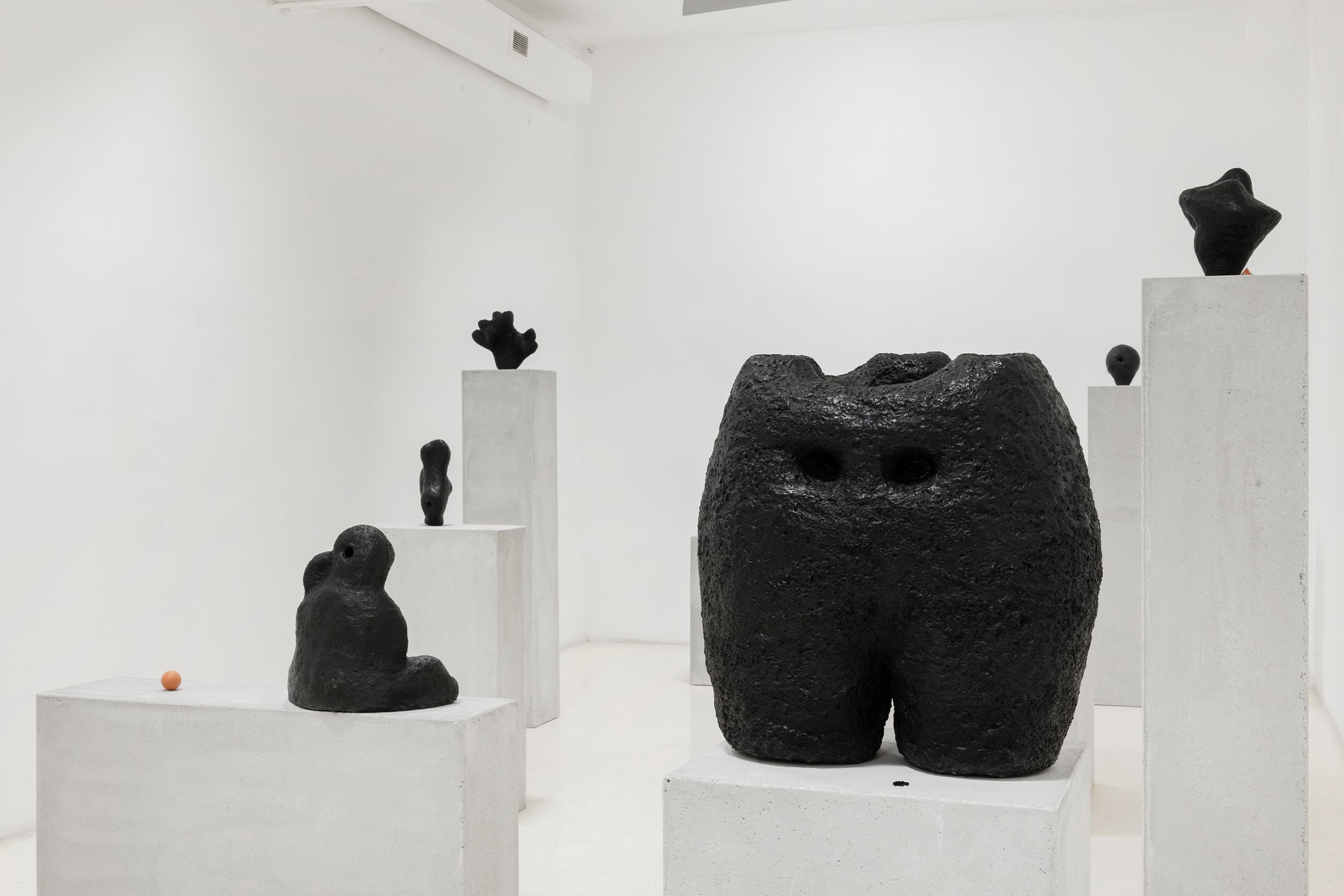 Namsal Siedlecki, Mvaḥ Chā, 2020. View of the exhibition curated by Marcello Smarrelli, Courtesy Fondazione Pastificio Cerere and the artist. Photo Andrea Veneri_3